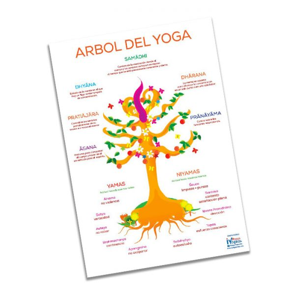 Arbol del yoga lamina ilustrativa.
